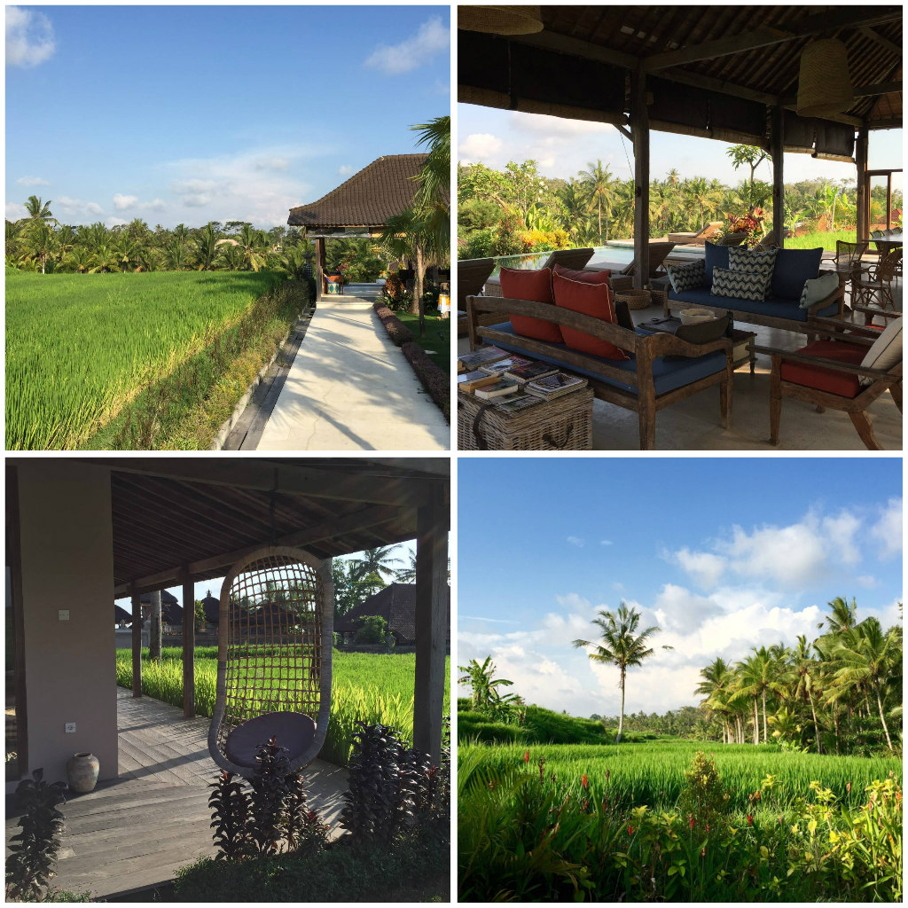 Three Magical Retreat Centers in Bali You Have To See To Believe